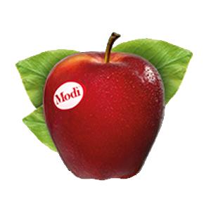 mela-modi