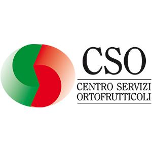 cso-1