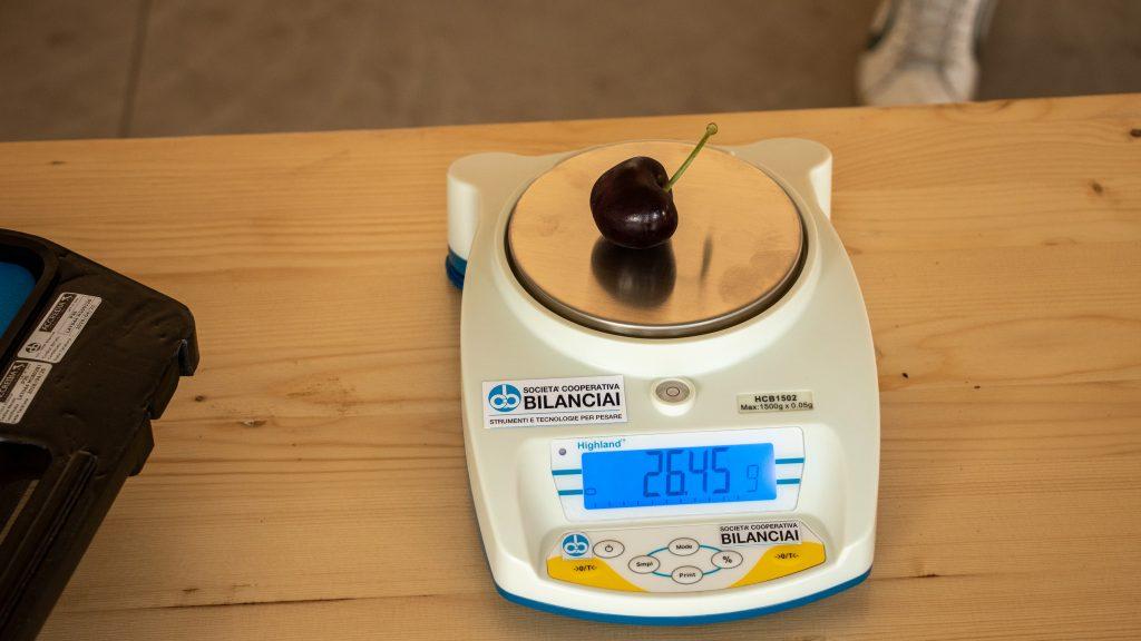вес вишни из Книги рекордов Гиннеса